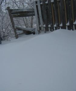 SNOW FEB 13 - 2